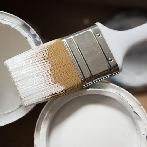 paintbrush-4577578_1920